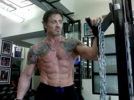 Schwarzenegger Or Sylvester Stallone Arnold 2012